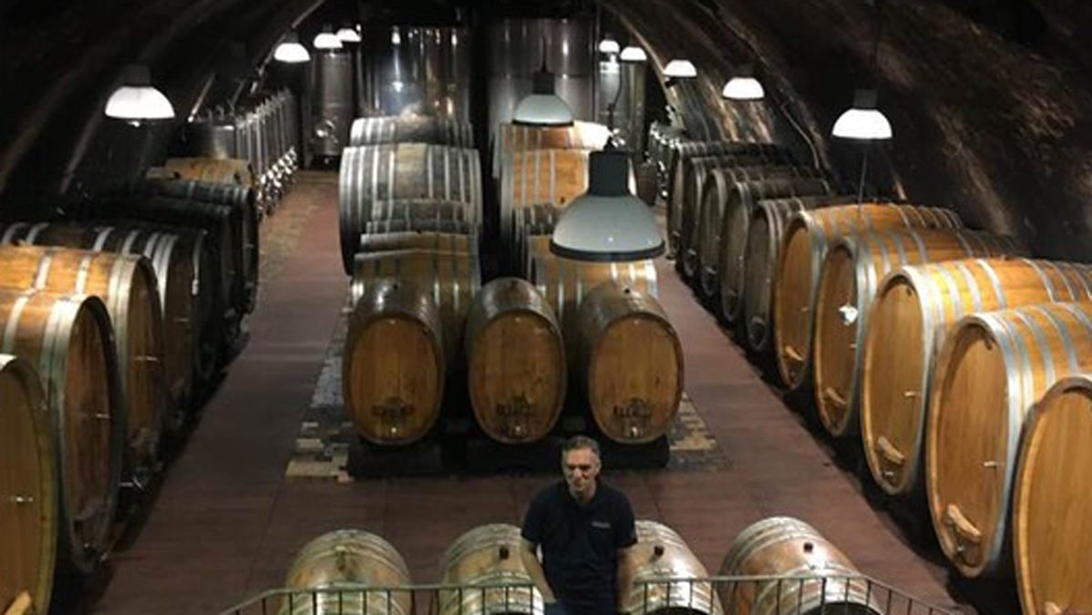 Where wine is stored