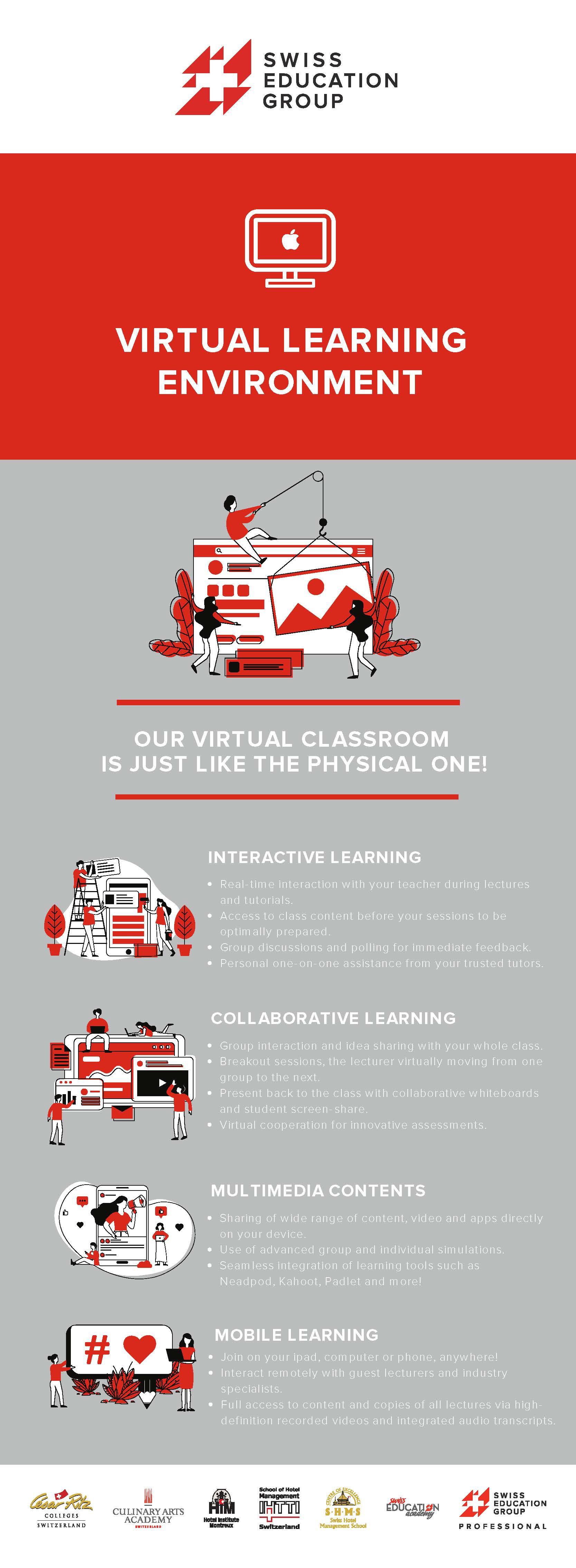 Graphic design describing the virtual learning environment